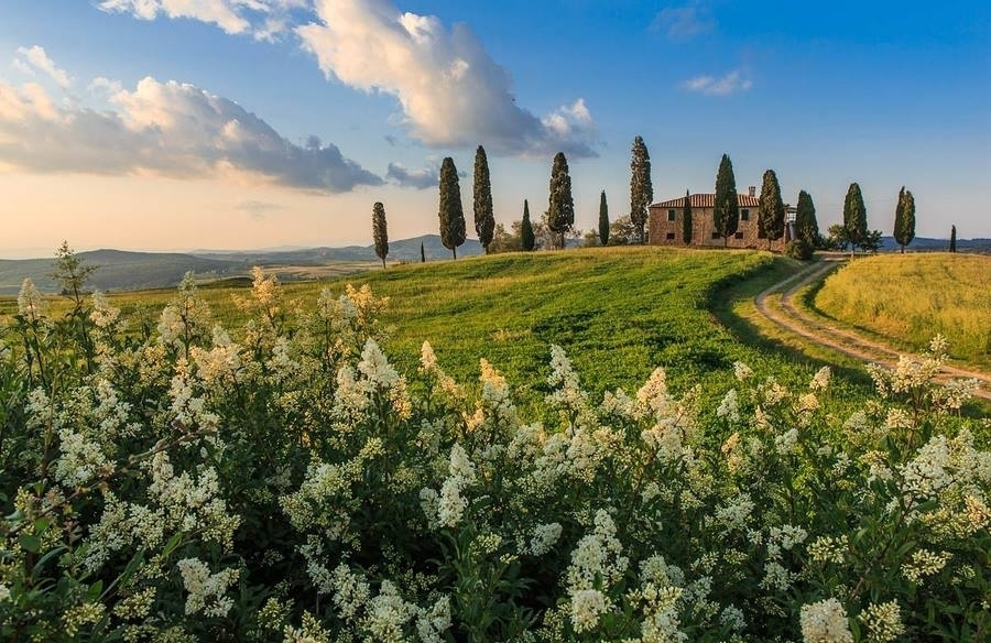 Tuscany is a magical setting for a group gathering! - NewTuscanExperience